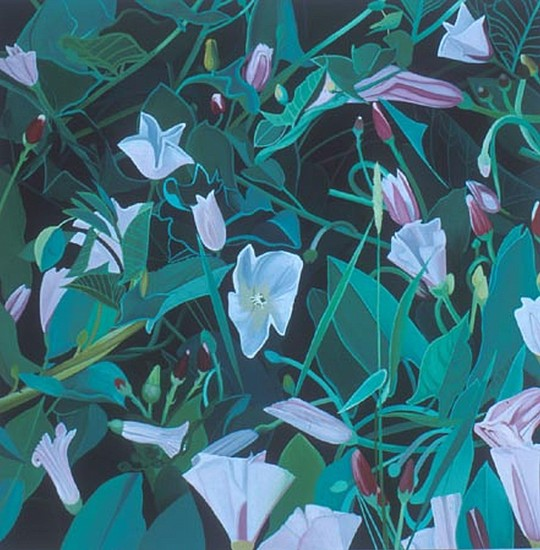 KAREN KITCHEL, Field Bindweed #11 oil on wood
