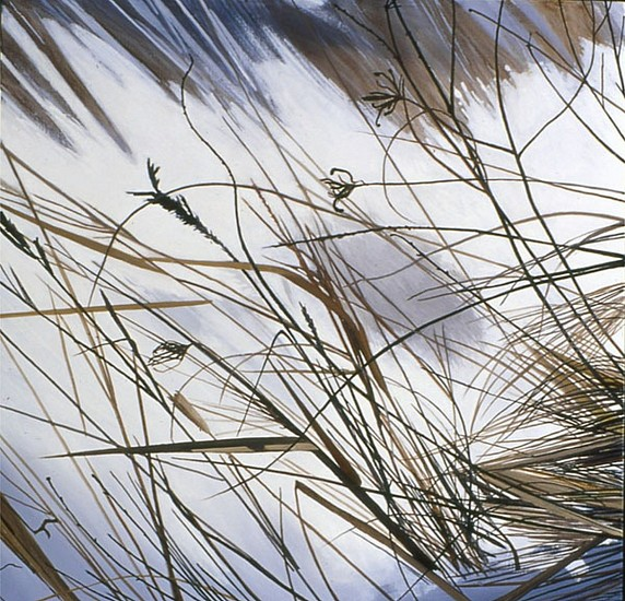 KAREN KITCHEL, DEAD GRASS 2, WINTER oil on panel