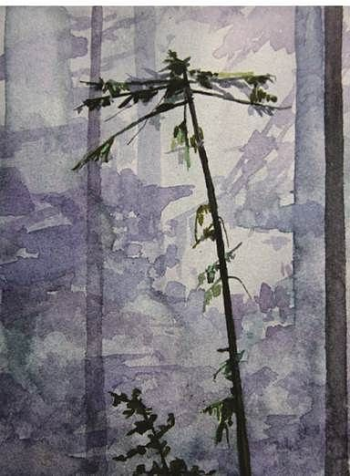 CLAIRE SHERMAN, TREE mixed media on paper