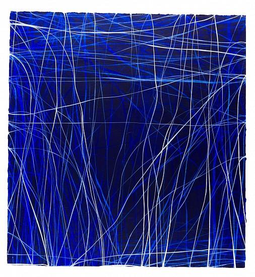 ERIN WIERSMA, EXAMEN, 3/13/2016-2017 acrylic on  paper