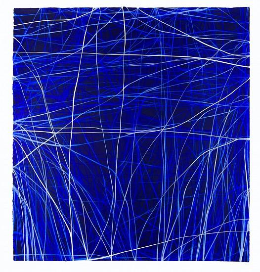 ERIN WIERSMA, EXAMEN, 7/25/2015 acrylic on  paper