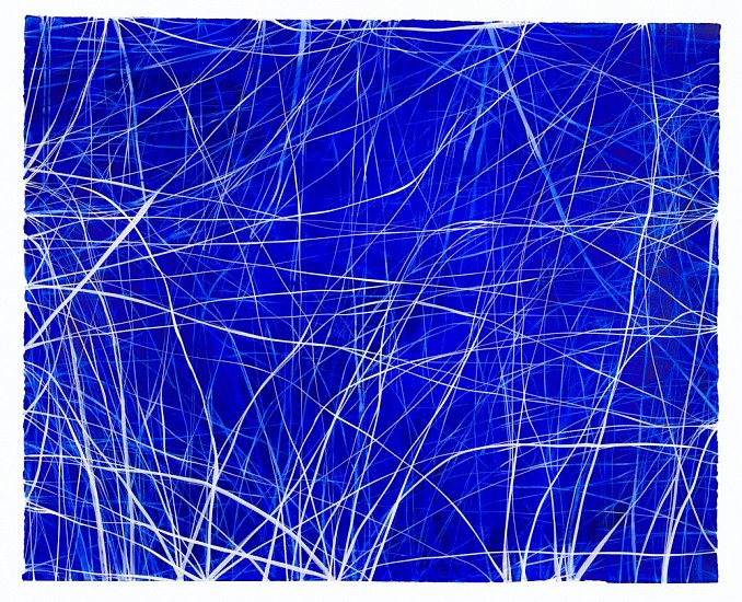 ERIN WIERSMA, EXAMEN, 12/13/2016 acrylic on  paper