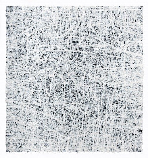 ERIN WIERSMA, EXAMEN, 1/2/2015 acrylic on paper