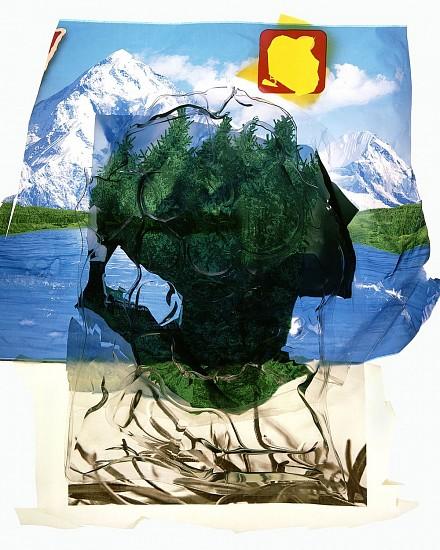 GARY EMRICH, ALL CONSUMED #37  1/10 archival digital inkjet print