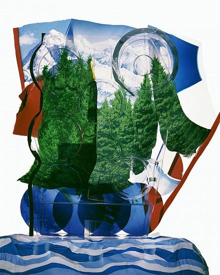 GARY EMRICH, ALL CONSUMED #21 archival inkjet print