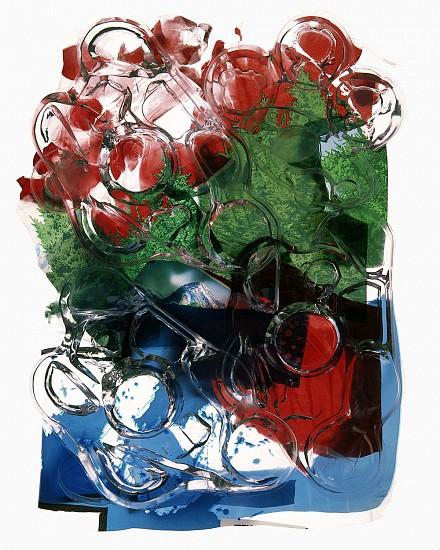 GARY EMRICH, ALL CONSUMED #18 archival inkjet print