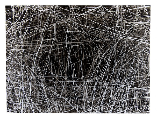 ERIN WIERSMA, 8/4/2017 charcoal/ acrylic on panel