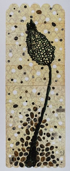 ANA MARIA HERNANDO, ANETHUM GRAVEOLENS acrylic and collage on lithograph with cut-outs