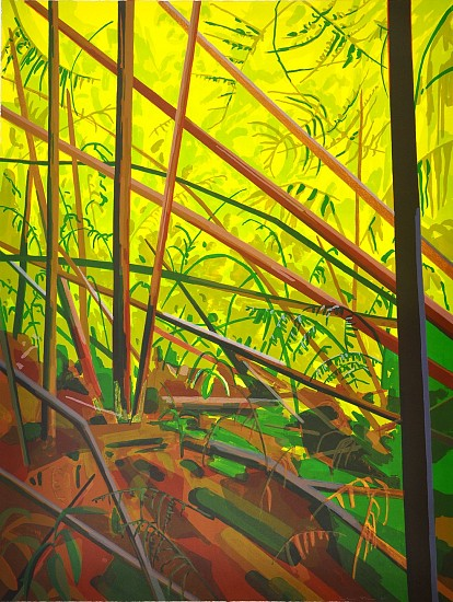 CLAIRE SHERMAN, UNDERBRUSH  11/30 color lithograph